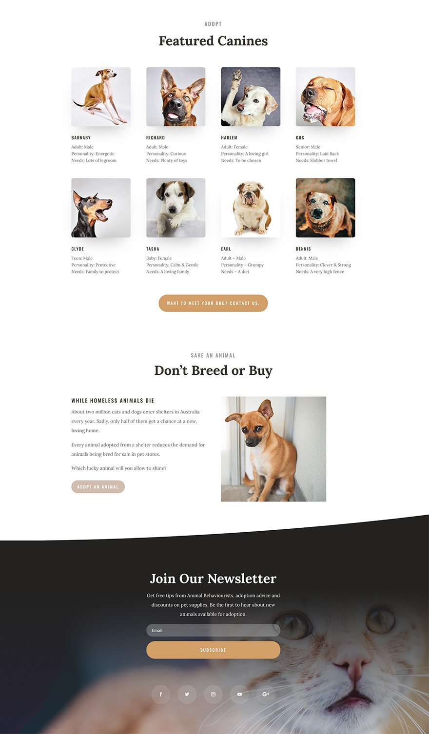 Conversion optimised website design for animal adoption charity
